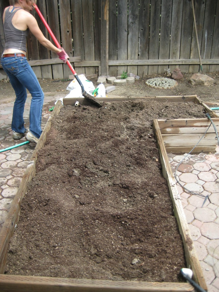 Turning over the soil in the other bed
