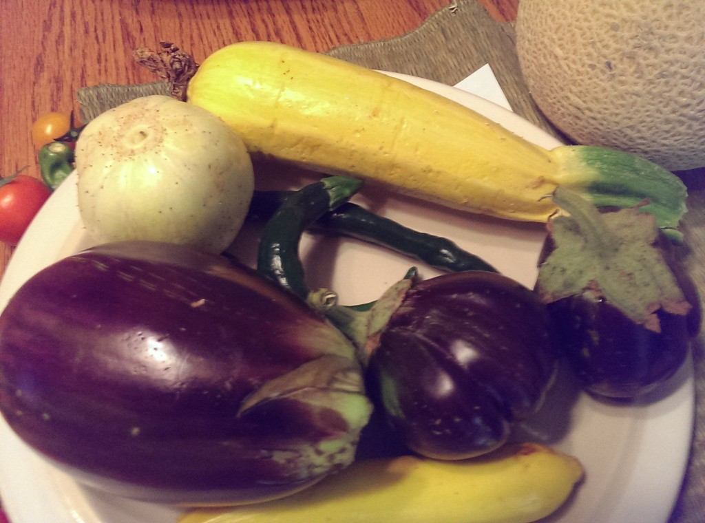 eggplants, squash, and cukes!