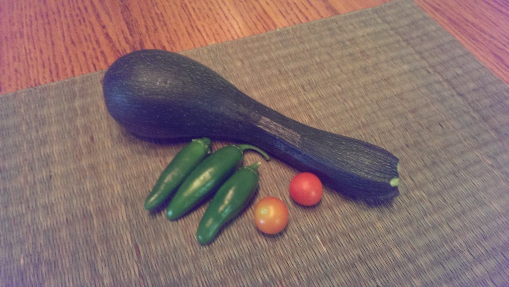 This was what I picked this week from our garden
