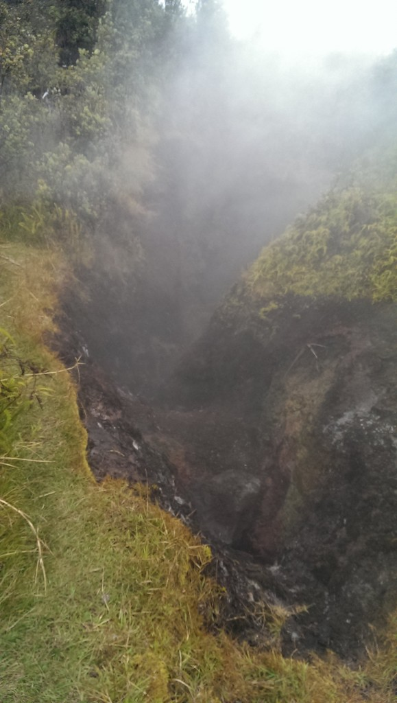 Steam rising from a crack in the earth at the Sulpher Vents